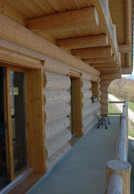 защита древесины